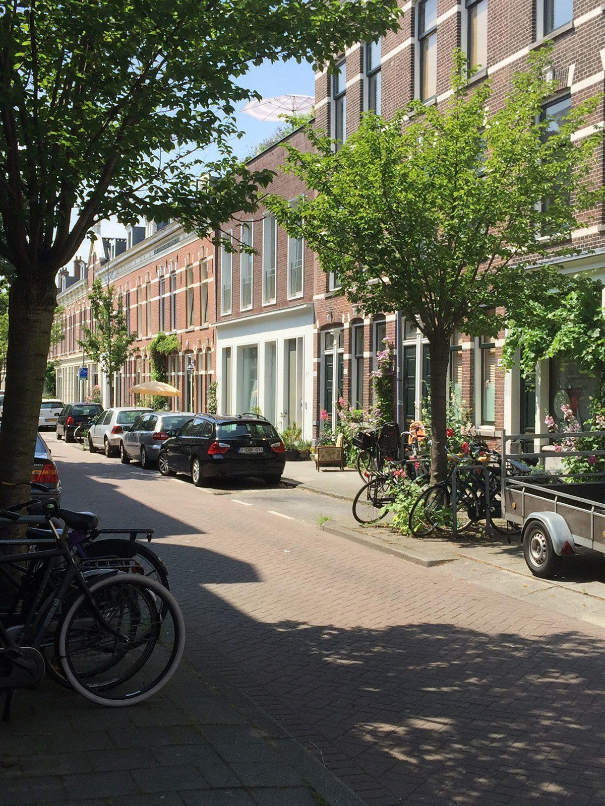 Volmarijnstraat Straatgevel